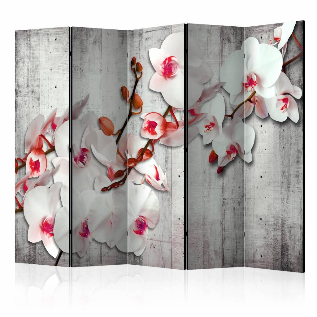 Vouwscherm – Orchidee op beton 225x172cm | Karo-art | 5902875655864