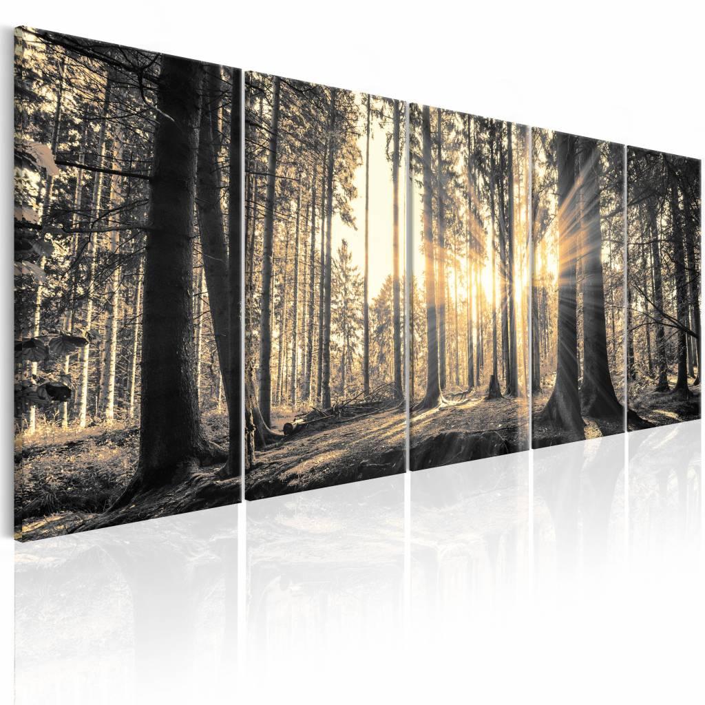 Schilderij – Bos vol schaduwen , beige bruin , 5 luik | Karo-art | 5902875690278