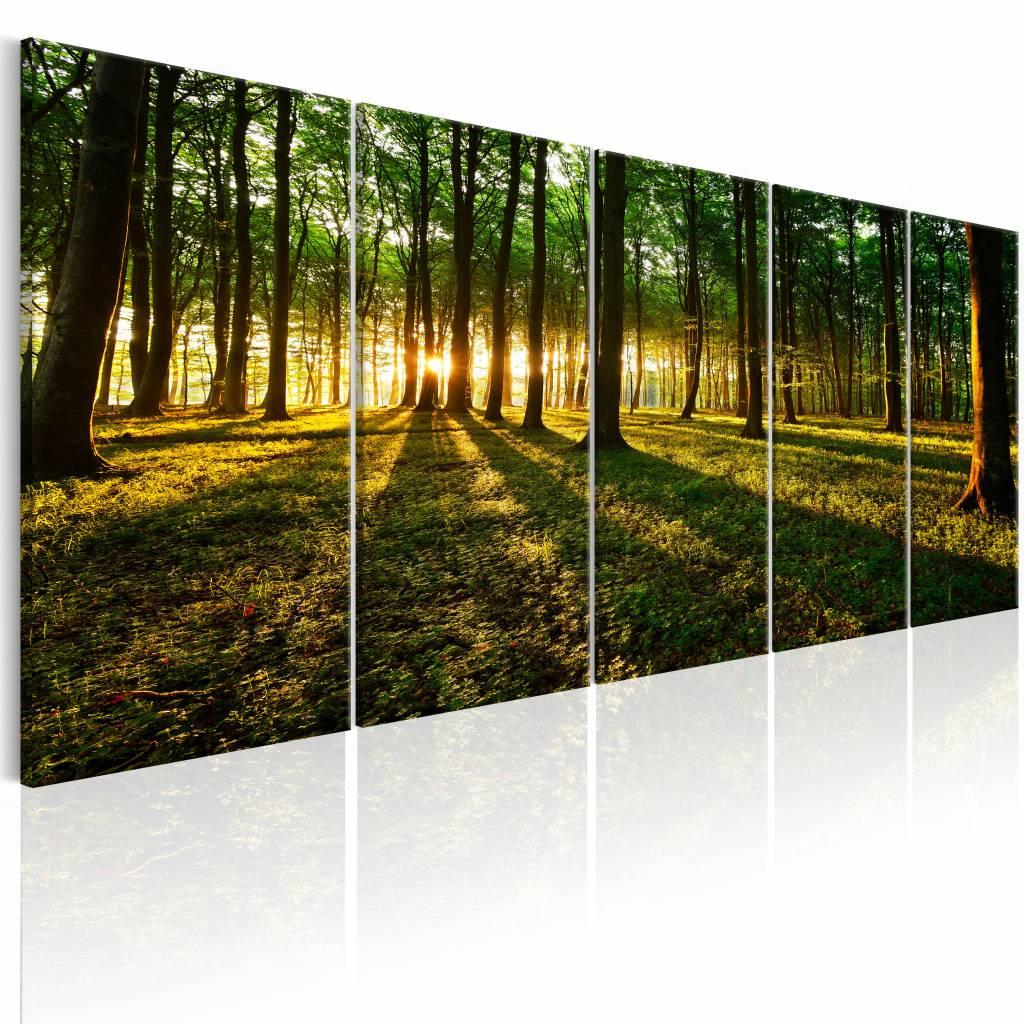 Schilderij – Schaduw van de Bomen , groen bruin , 5 luik | Karo-art | 5902875691695
