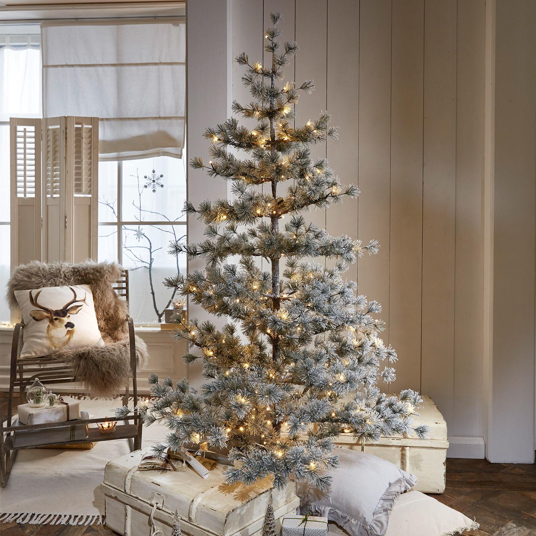 Kerstboom Sapi | LOBERON | 4250769278738