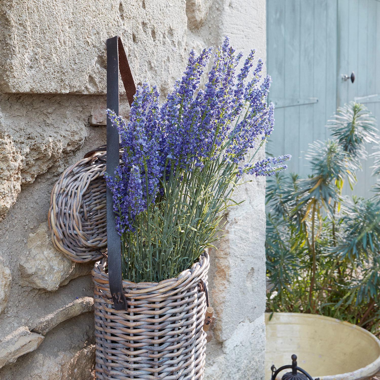 Sierbloem set van 6 Lavender   LOBERON   4250769290600